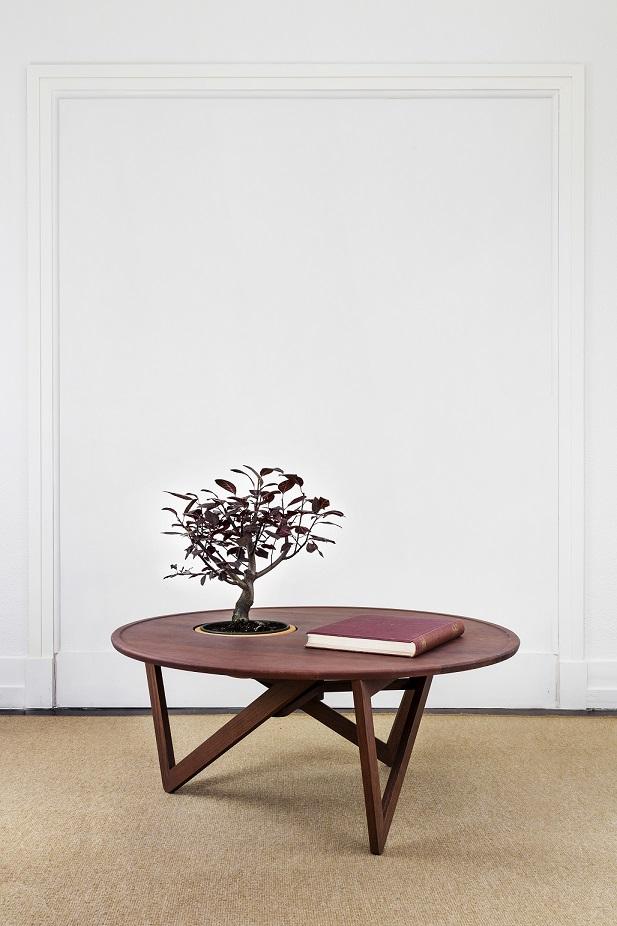 CUCO Handmade Furniture: between human and nature