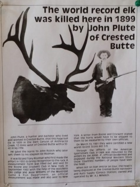 The John Plute Boone & Crockett World Record Bull Elk. Now Found at The Crested Butte Chamber of Commerce in Colorado