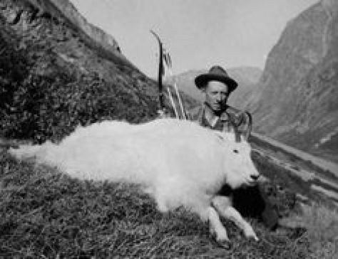 a vintage photo of legendary archer Fred Bear, one of the father's of modern bowhunting and manufactuer of archery equipment, posing with a mountain goat trophy he took on a bowhunting expedition to british columbia with a recurve bow