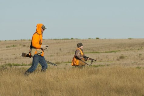 A man and his young son walk the grasslands while hunting birds and upland game