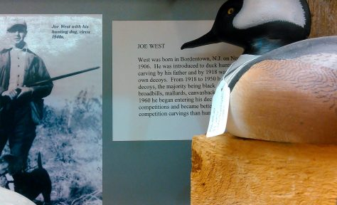 A Merganser Decoy by Joe West of Bordentown, New Jersey. Displayed at The Tuckerton Seaport and Baymen's Museum in Tuckerton, New Jersey. New Jersey Decoys Rule!