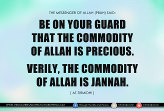 [throughbitnpcs] the commodity of allah is jannah
