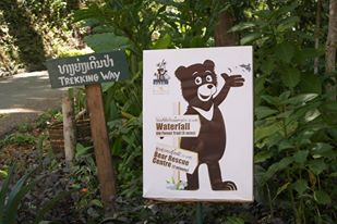Sii Waterfalls and Bear Rescue