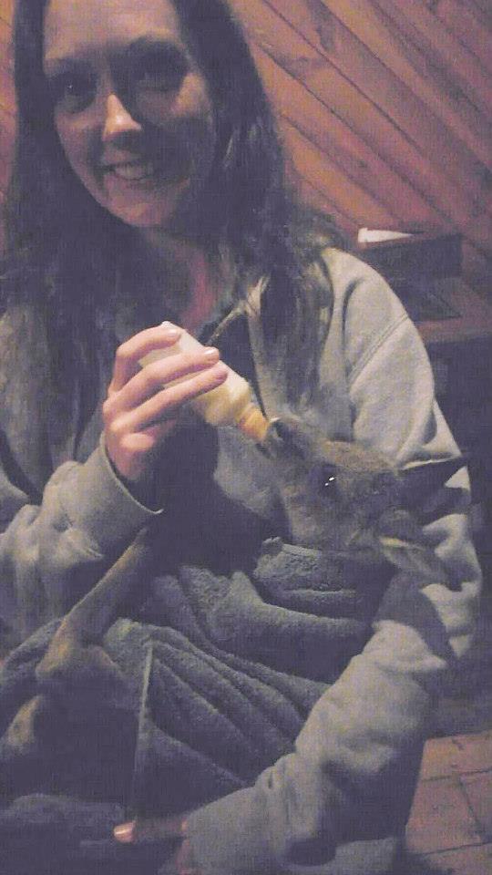 Feeding baby Joey