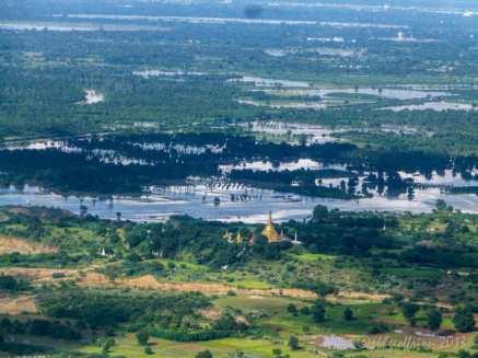 Rice Paddies near Mandalay