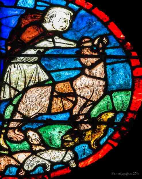 David (or Samson) kills a lion (see Judges 14:5 and 1 Samuel 17:34-36)