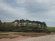 from Budleigh beach
