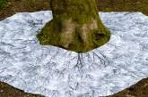 root-branch-WP_lindagordon_170313_028