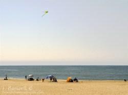 Kite & sea. Cape May, NJ