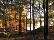Harriman State Park, Harriman, NY
