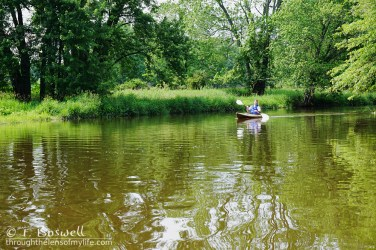 DSC00908-2-kayak-wallkill-river-green-summer-2015-ray-by-terry-boswell-bostree-sugar-loaf-ny-wm