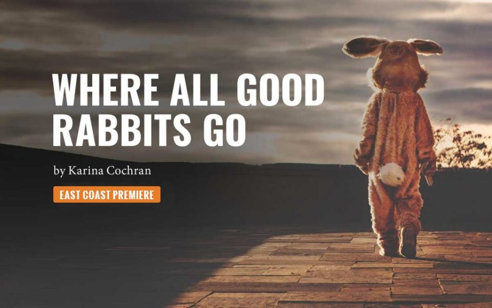 Where All Good Rabbits Go