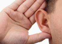 Hcb Hand Ear