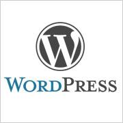 WordPress 3.0.5 disponible