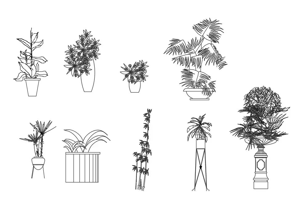 The CAD drawing having the details of wonderful plants