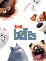 Comme Des Betes 2 Streaming Gratuit : comme, betes, streaming, gratuit, Comme, Bêtes, Streaming, Direct, Replay, CANAL+, MyCANAL