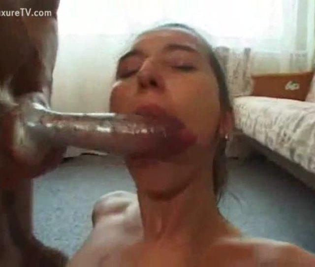 All Wife Sucking Dog Dick