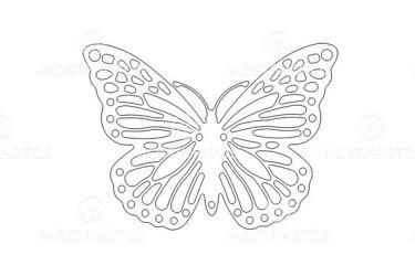 Butterfly outline by Alan Bozac Mostphotos