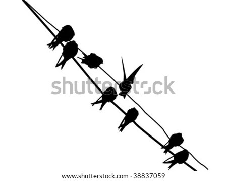 Vector Silhouette Migrating Swallow Reposing On Stock