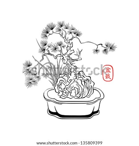 Ink Styled Drawing Bonsai Tree Iris Stock Vector 135809399