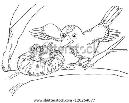 Bird Cartoon Cute Fighting Stock Photos, Royalty-Free
