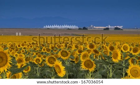 Denver International Airport Stock Images Royalty Free