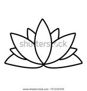 lotus stock royalty-free