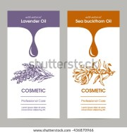 vector set templates packaging