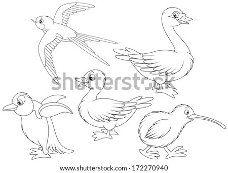 Bird Outline Drawing Stock Photos, Images, & Pictures