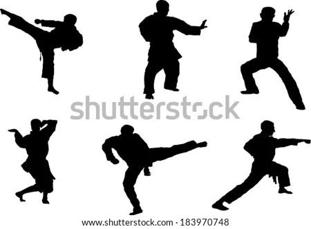 Taekwondo Kick Stock Images, Royalty-Free Images & Vectors