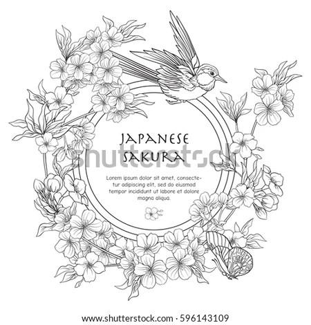 Illustrations Japanese Blossom Sakura Place Text Stock