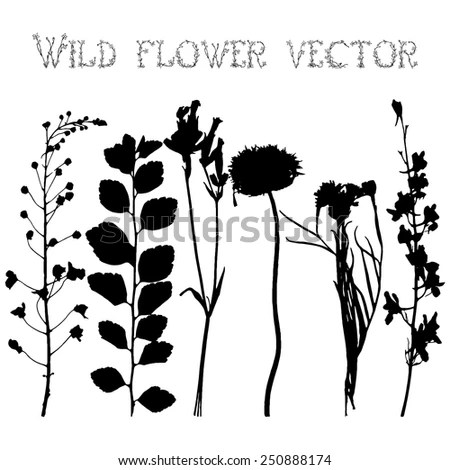 Different Plant Silhouette Stock Vector 128514524