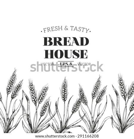 Hand Drawn Vector Illustration Wheat Bread Stock Vector