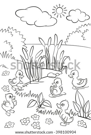 Coloring Pages Five Little Cute Ducklings Stock Vector