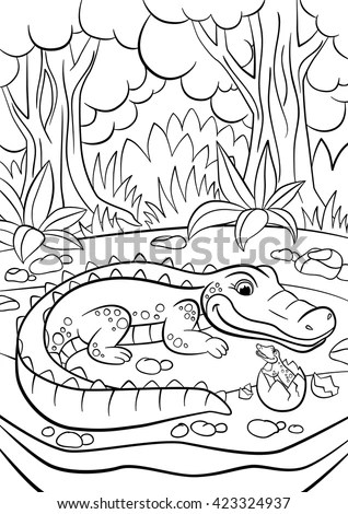 Alligator Picture Stock Images, Royalty-Free Images