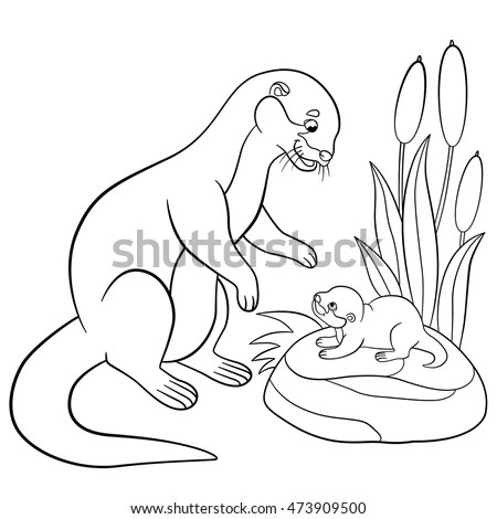 Baby Otter Stock Images, Royalty-Free Images & Vectors