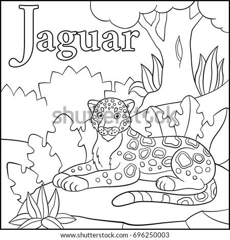 Cartoon Jaguar Stock Images, Royalty-Free Images & Vectors