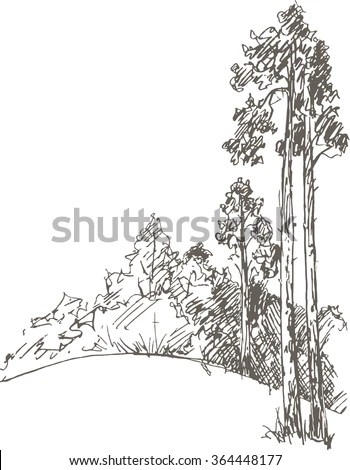 Forest Sketch Stock Images, Royalty-Free Images & Vectors