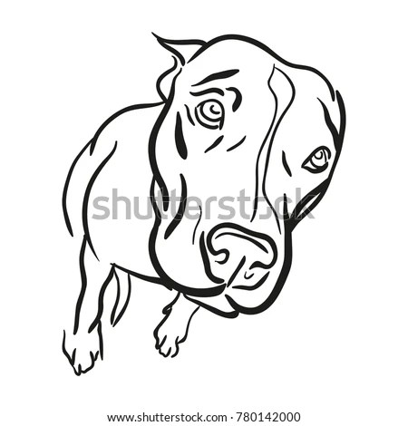 Pitbull Logo Stock Images, Royalty-Free Images & Vectors