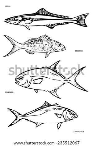 Saltwater Fish Stock Images, Royalty-Free Images & Vectors
