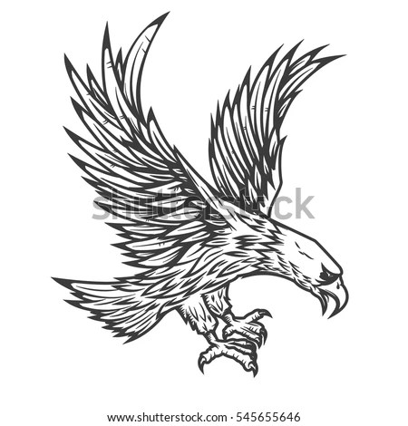 Illustration Flying Eagle Isolated On White Stock Vector