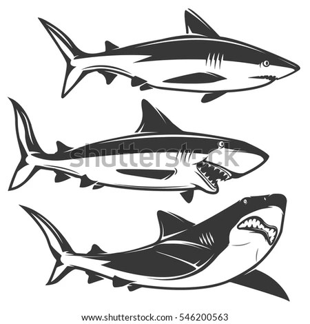 Shark Silhouette Stock Images, Royalty-Free Images