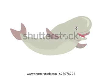 beluga cartoon whale vector cute icon arctic background isolated flat character aquatic shutterstock illustration vectors royalty fauna