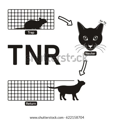 Neutering Stock Images, Royalty-Free Images & Vectors