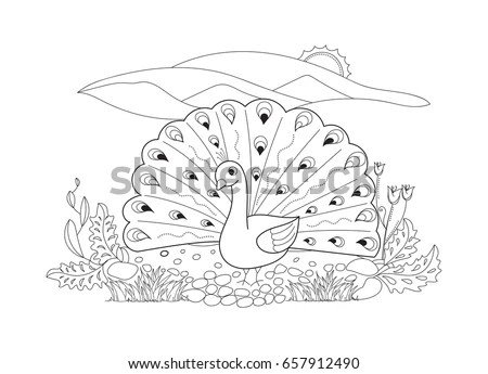 Peacock Outline Stock Images, Royalty-Free Images