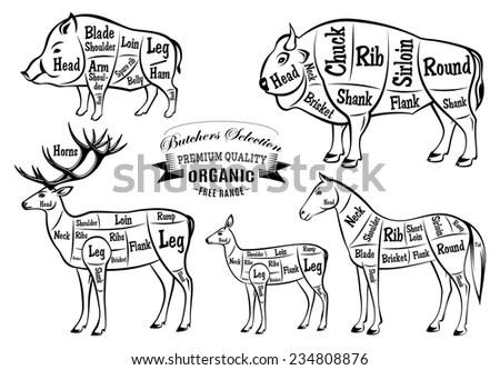 how to cut deer meat