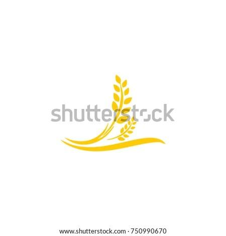Agriculture Wheat Logo Template Vector Icon Stock Vector