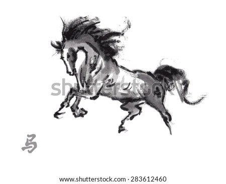 Wild-horse Stock Photos, Royalty-Free Images & Vectors