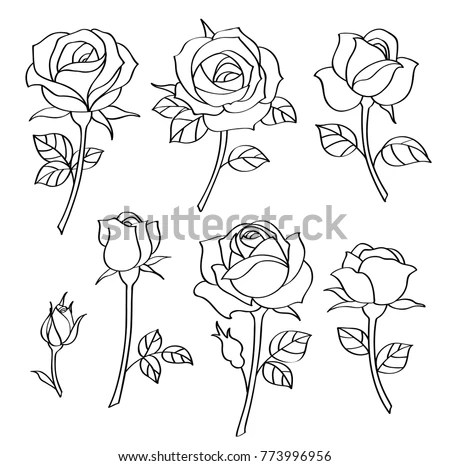 Vector Set Simple Roses Vintage Flowers Stock Vector