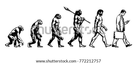 Chimpanzee Stock Images, Royalty-Free Images & Vectors